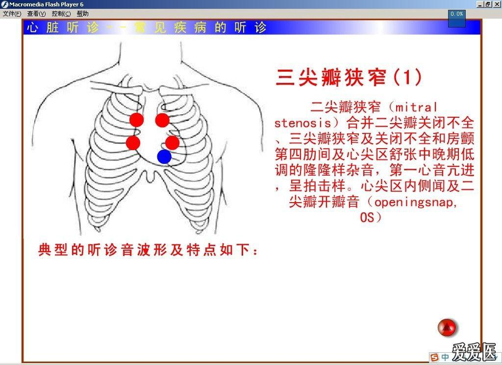 个人 珍藏 心肺听诊 附播放器