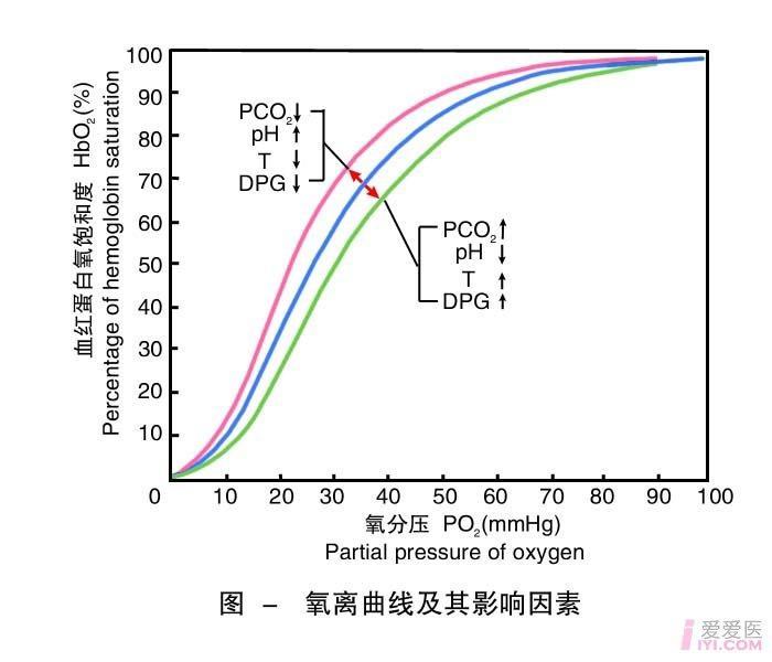 11-氧离曲线及其影响因素 .jpg