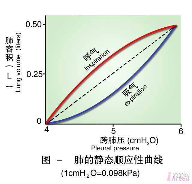 19-肺的静态顺应性曲线 .jpg