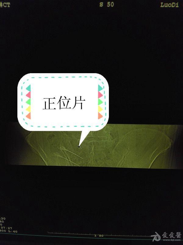 IMG_20150812_155606_副本.jpg