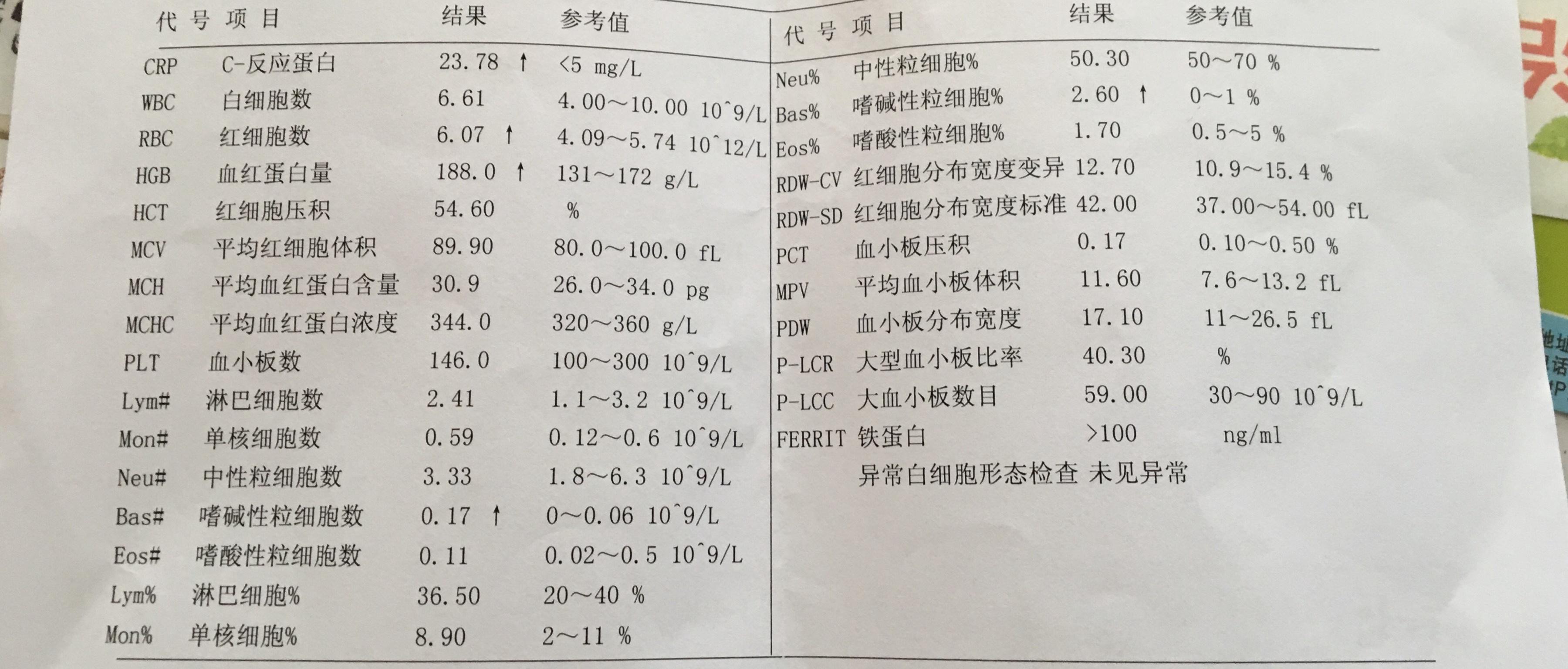 1D4DCD84-C161-497A-A3CB-BD1AEB75B6FC.jpeg